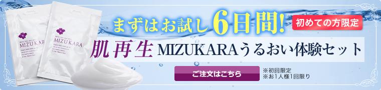 MIZUKARA体験セット